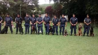 Cães da GCM atuam no policiamento e em abordagem terapêutica