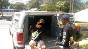 Equipe da Guarda Municipal prende assaltante em flagrante