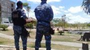 Mais de 400 seguranças exercem função de guarda municipal ilegalmente em Arapiraca