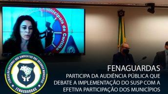 Fenaguardas participa de audiência pública que debate implementação do SUSP com a efetiva participação dos municípios