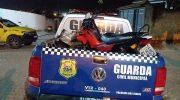 Guarda Municipal consegue deter motociclista embriagado em Palmeira dos Índios